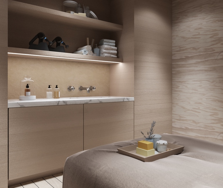 Theragun Devices on Spa Shelf